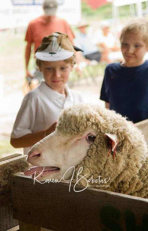Belknap County 4 H Fair at the Belmont Fairgrounds Saturday, August 11, 2012. (Karen Bobotas/for the Laconia Daily Sun)