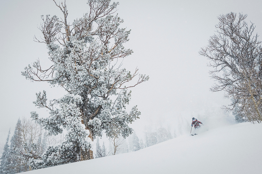 April showers bring late season powder days. Kaylin Richardson skiing deep in the spring swing of things, The Microwave, Alta, Utah.