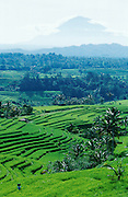 Gunung Agung (3142m), active volcano and Bali's highest mountain, towering over rice terraces near Apuan.