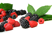 Blackberries and raspberries on white background
