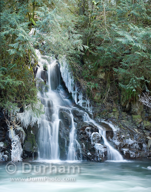 A small waterfall feeding into the east fork of the Lewis River in Washington state. Gifford Pinchot National Forest.