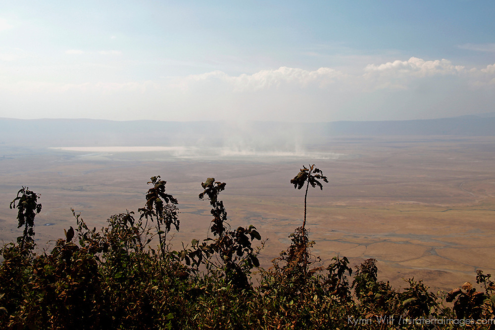 Africa, Tanzania, Ngorongoro Crater. View of Ngorongoro Crater.