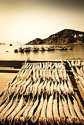 Fish drying in the sun,Zhoushan with boats docked in bay