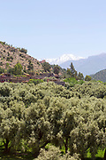 Tafza region mountain landscape, Ourika Valley, Morocco