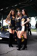 August 23-25 2019: Lamborghini Super Trofeo: Virginia International Raceway. Lamborghini grid girls, Wayne Taylor Racing, Prestige Performance/WTR Paramus Lamborghini Huracan Super Trofeo EVO