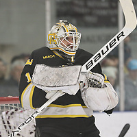 Gustavus vs Augsburg MIAC Hockey Championship, March 3, 2018. Jeff Lawler, d3photography.com