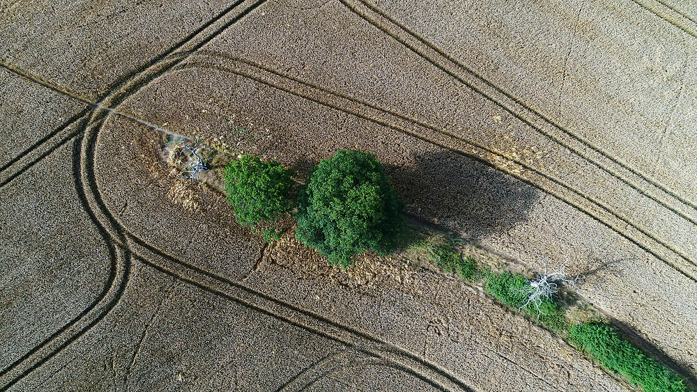 Aerial vew of arable field, Hampshire