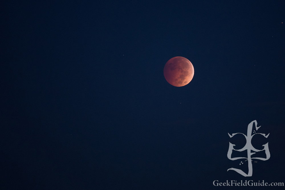 Lunar Eclipse 2014-10-08. Captured in Durham, NC. Canon 6D, Tamron 70-300, f/5.6, ISO 1600, 0.8 sec.