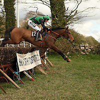P.J O' Neill and Danpaddy Andy in action in the second at the first County Clare Hunt point to point in Cahergal, Newmarket-on-Fergus on Easter Sunday.<br /> Photograph by Yvonne Vaughan