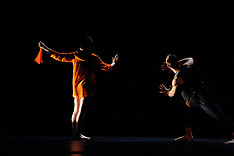 Dance Seven