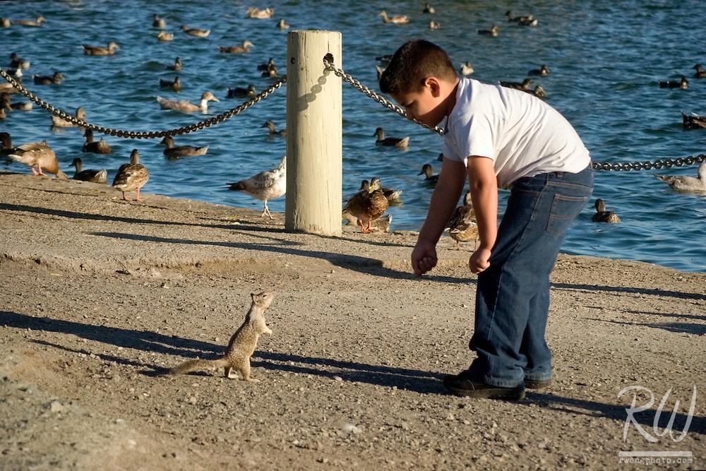 Young Boy Feeding Squirrel, Palo Alto Baylands Preserve, California