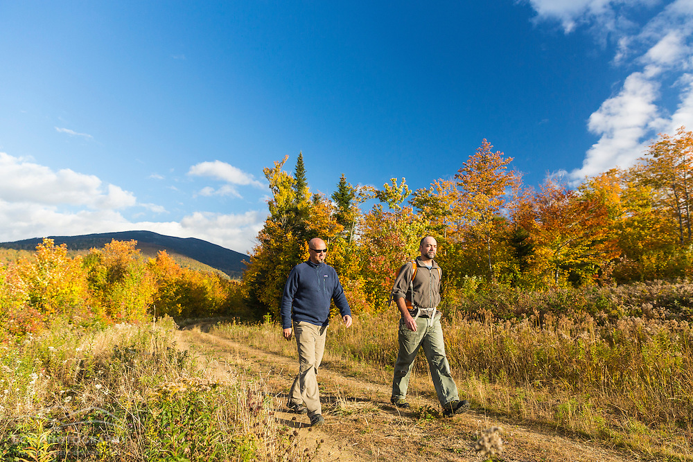 Two men walk a woods road in fall in Reddington Township, Maine. Near Black Nubble Mountain. High Peaks Region.