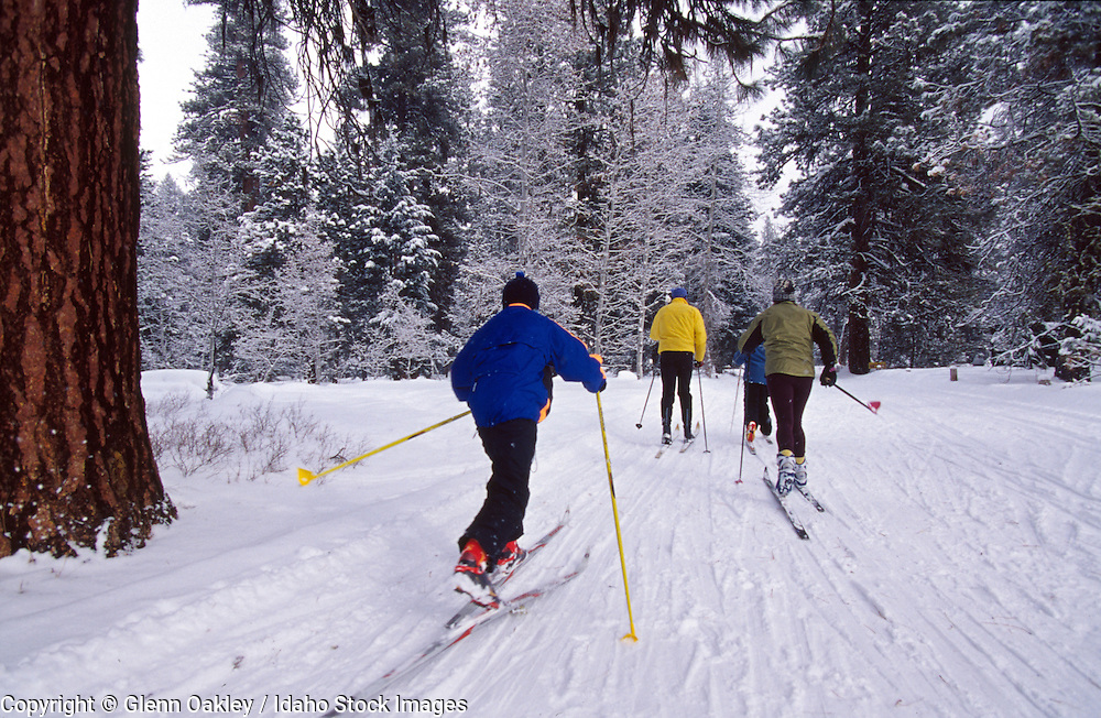 Family cross country skiing at Ponderosa State Park, McCall, Idaho.