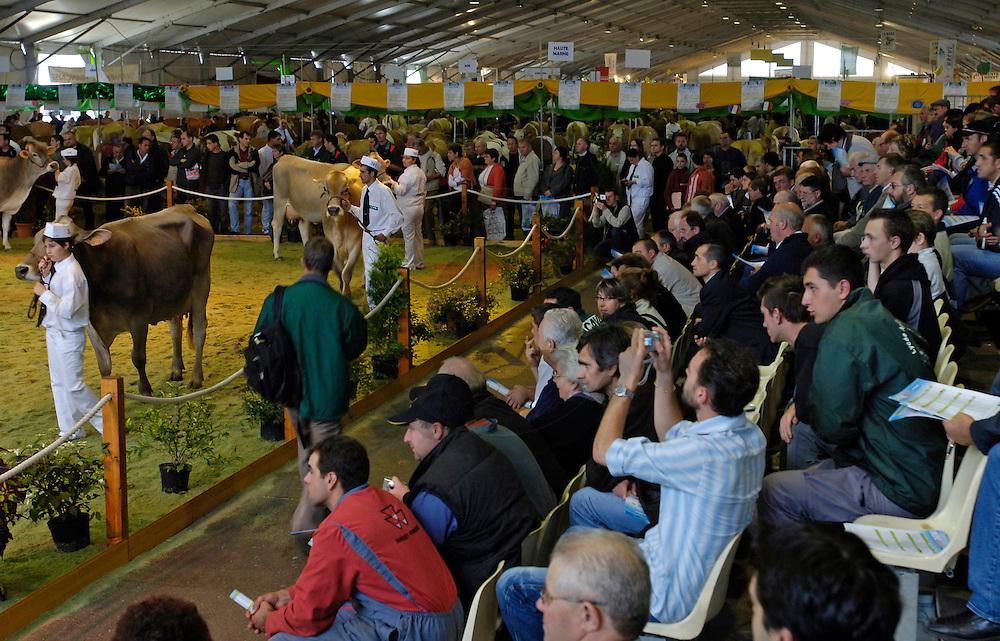 06/10/06 - COURNON - PUY DE DOME - FRANCE - Sommet de l Elevage 2006 a la Grande Halle de Cournon. Concours National BRUNE - Photo Jerome CHABANNE