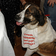 NLD/Amsterdam/20060131 - BN'er hondendiner, protest tegen gebruik proefdieren, hond met slabbetje om