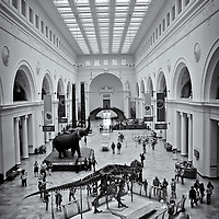 Natural History Museum<br />