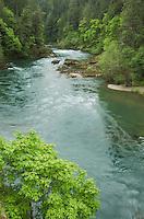 North Umqua River Oregon