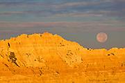 The full moon sets behind a golden ridge along the Conata Basin in Badlands National Park, South Dakota.