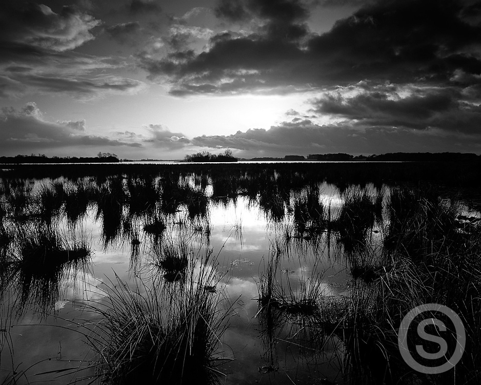 Photographer: Chris Hill, Lough Beg, River Bann, County Tyrone