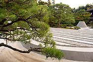 Pine trees surrounding a conical sand dome and the raked sand garden at the Ginkaku-ji Pure Land Garden, Kyoto,  Japan