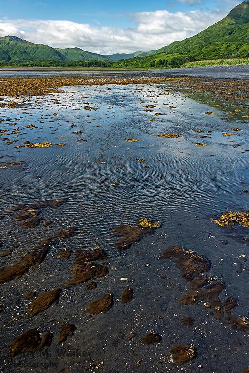 Low tide in Middle Bay;eastern Kodiak Island; Alaska