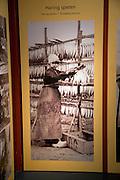 Old photo of girl threading herring fish, Zuiderzee museum, Enkhuizen, Netherlands