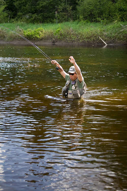 Male angler deep wading while fly fishing on the West Branch of the Ausable River in the Adirondacks, New York State.