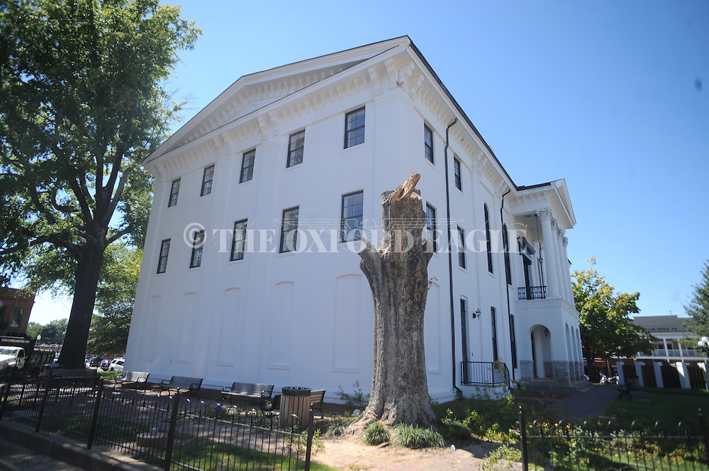 A crew from Woodland Tree removes a dead oak tree from the grounds of the Lafayette County Courthouse in Oxford, Miss. on Sunday, September 19, 2010.