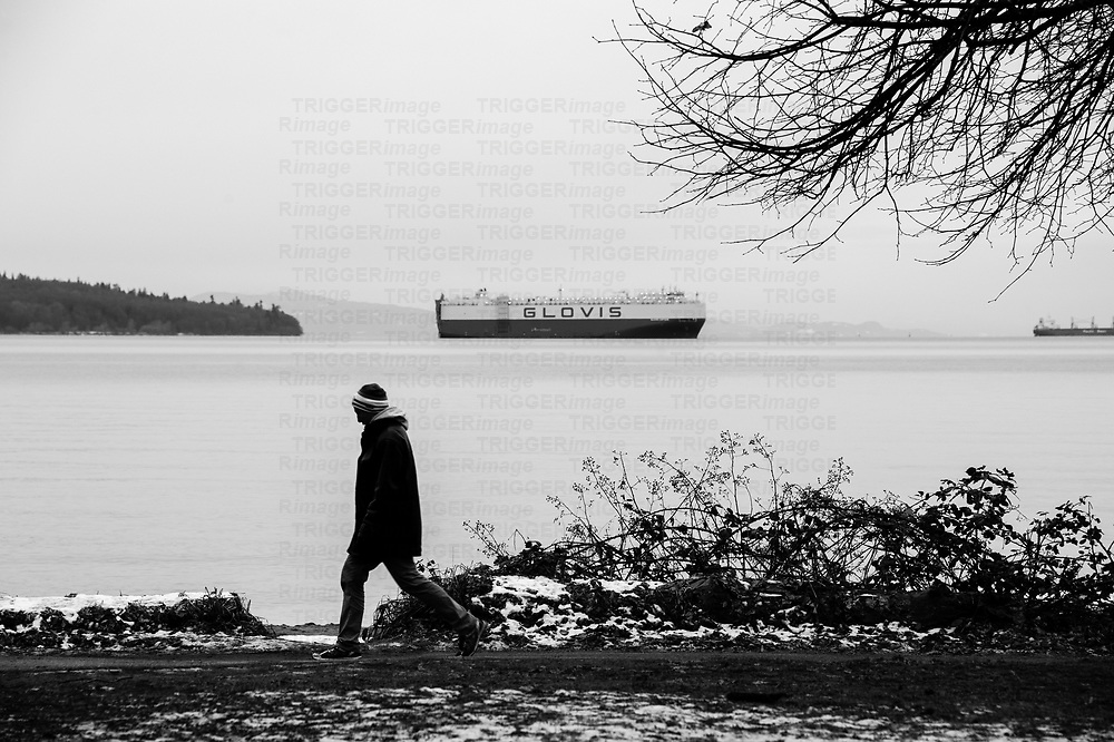Man in a touque walking through small patch of snow along oceans edge, past freighters and branches.