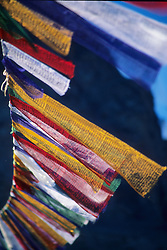 Asia, India, Ladakh, Leh, Buddhist prayer flags fluttering in wind