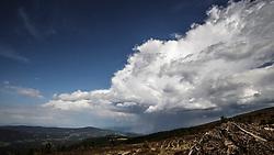 THEMENBILD - Gewitterwolken ziehen vom Tal Richtung Berg am 23. Mai 2017 auf der Handalm, Steiermark, Österreich // Clouds are rising twords the mountain on 23 May 2017 at the Handalm, Styria, Austria. EXPA Pictures © 2013, PhotoCredit: EXPA/ Erwin Scheriau
