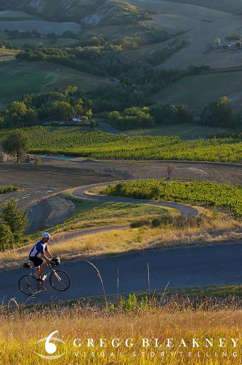 Road Cyclist - Faenza, Italy