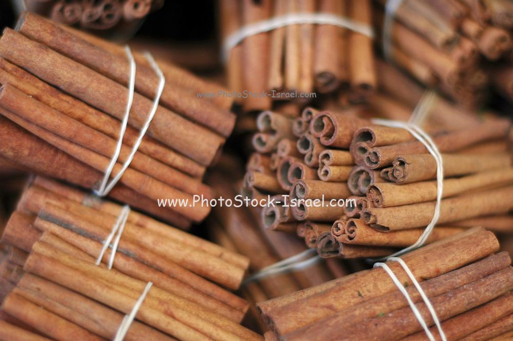 Bundles of Cinnamon sticks Cinnamomum zeylanicum