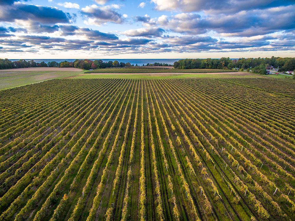 Farm in Erie County Pennsylvania