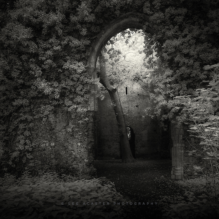 Here's another from the ruined church up near Winterton