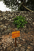 Hikiau Heiau (Hawaiian temple) at Kealakekua Bay, Napoopoo, The Big Island, Hawaii USA