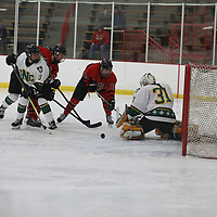 Women's Ice Hockey: St. Norbert College Green Knights vs. Lake Forest College Foresters