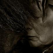 Cancersjuk kvinna utanför Ulricehamn men en av sina hästar, den största trösten. Kvinnan är i dag avliden.