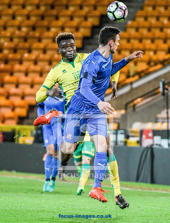 Michee Efete of Norwich City U23 v Dinamo Zagreb U23 during the Premier League International Cup Quarter-Final match at Carrow Road, Norwich<br /> Picture by Matthew Usher/Focus Images Ltd +44 7902 242054<br /> 27/02/2017