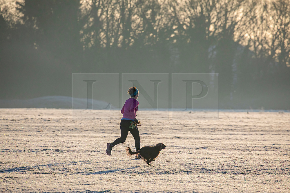 © Licensed to London News Pictures. 19/01/2020. London, UK. Runner enjoys a frosty start to the day in Wimbledon Common as forecasters predict below zero mornings for the week ahead. Photo credit: Alex Lentati/LNP