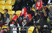 Warriors fans during the 2013 NRL season. Vodafone Warriors v Canterbury Bulldogs at Westpac Stadium, Wellington, New Zealand on Saturday 11 May 2013. Photo: Justin Arthur / photosport.co.nz