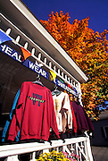 Image of a storefront in Wilmington, Vermont, American Northeast