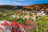 Village Of Cherven