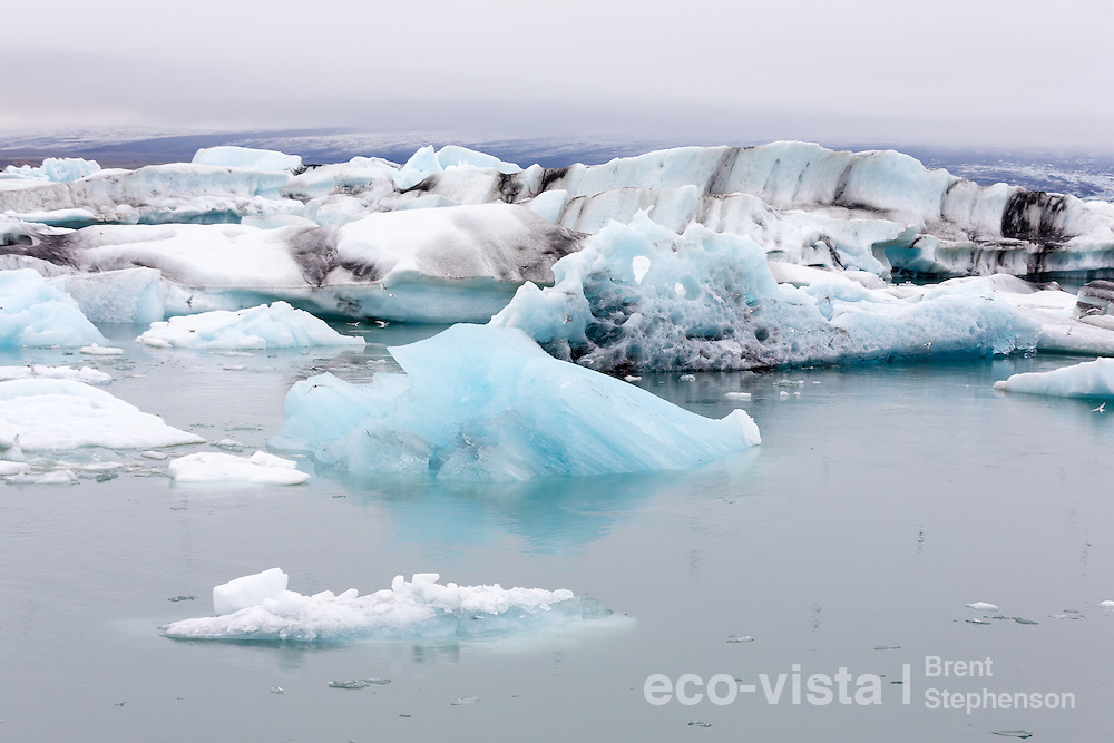 A jumble of icebergs live out their final days in the milky waters of the Jokulsarlon lagoon. Layers of volcanic ash and dust can be seen in the icebergs, a record of volcanic eruptions, with these icebergs having come from the Breidamerkurjokull Glacier. Jokulsarlon, edge of Vatnajokull National Park, Iceland. July.