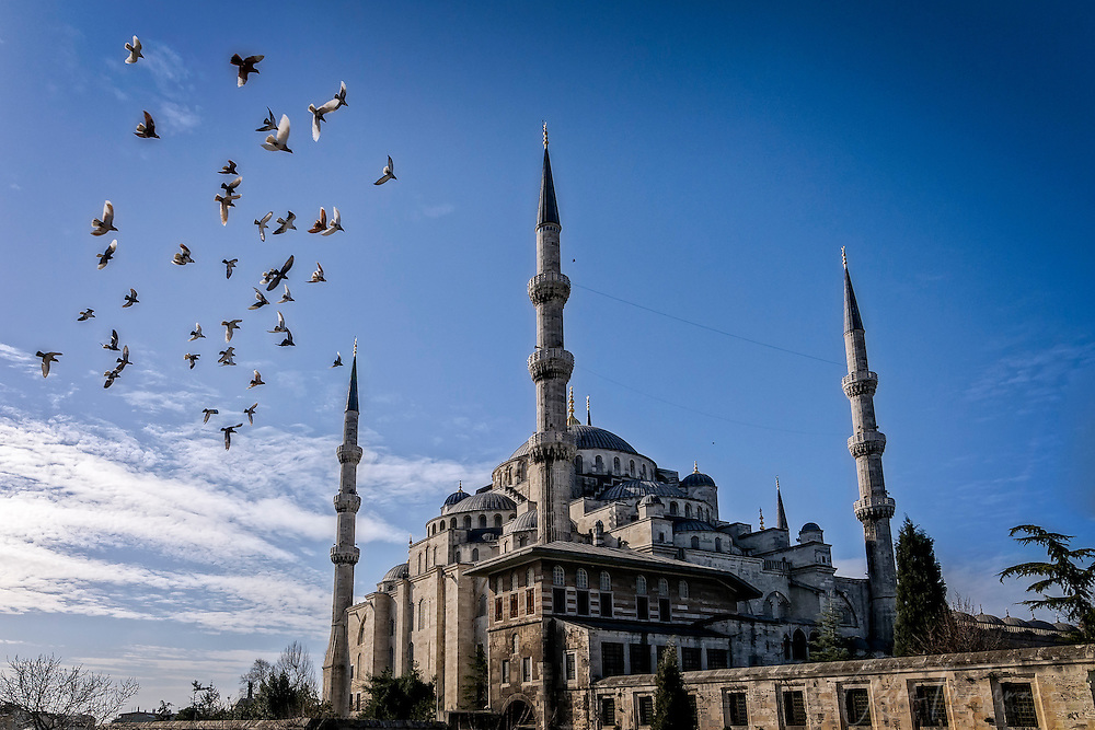 Birds fly around the Sultan Ahmed Mosque (The Blue Mosque)