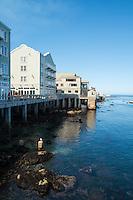 Cannery Row Buildings Along Shoreline, Monterey, California
