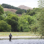 Fly Fishing in the Hawkes Bay region...... NOT WITH Grant Petherick who was unavailable..... .New Zealand,, 12th January 2011 Photo Tim Clayton.