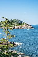 Acadia National Park Rugged Coastline
