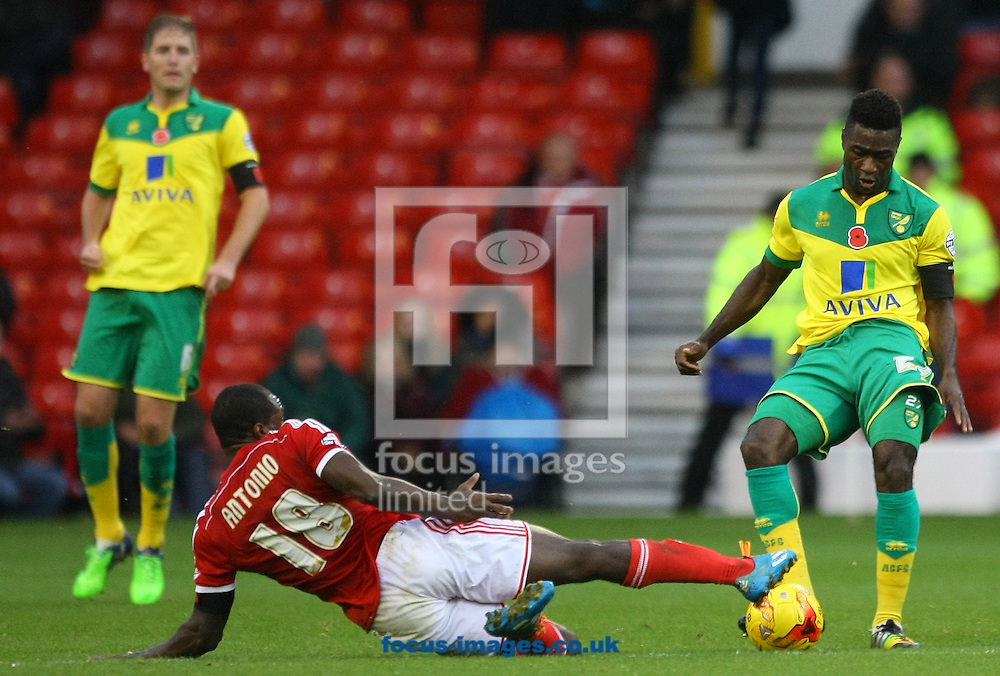 Michail Antonio of Nottingham Forest and Alexander Tettey of Norwich in action during the Sky Bet Championship match at the City Ground, Nottingham<br /> Picture by Paul Chesterton/Focus Images Ltd +44 7904 640267<br /> 08/11/2014