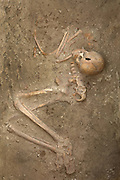 Skeleton in a foetal position in the burial chamber of a Dilmun tomb, c. 2050 BC, built in dry stone above ground, 1 of 13 middle class, late type mounds, at the Janabiyah Burial Mound Field, part of the Dilmun Burial Mounds site, Janabiyah, Bahrain. The site also includes 5 larger Chieftain Mounds. The Janabiyah tombs were constructed for residents of the villages of Saar and Budaiya. These tombs are at risk, due to the planned construction of a shopping mall. Picture by Manuel Cohen